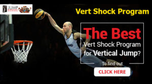 Vert Shock Program Review